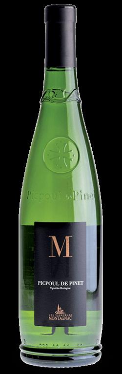 Gamme M AOP Picpoul, les vins de cépages des vignerons de Montagnac Domitienne