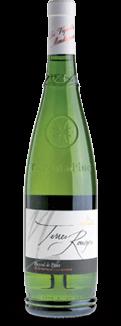 Découvrez les vins rouges IGP Côtes de Thongue, IGP Côtes de Bessilles