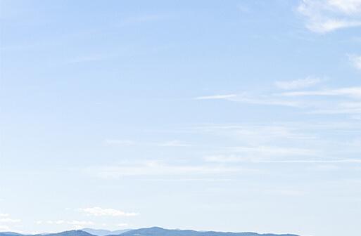 Découvrez les vins de cépages, picpoul de Pinet de la coopérative des vignerons Montagnac Domitienne