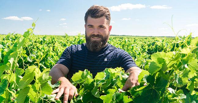 Les vignerons Montagnac Domitienne sont le partenaire historique des négociants régionaux ou nationaux ou d'entreprises actives à l'export