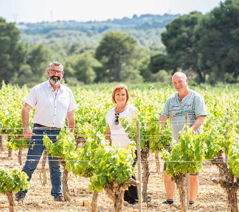 La coopérative des vignerons Montagnac Domitienne regroupe les caves de Montagnac, Cournonsec, Balaruc pour une agriculture durable