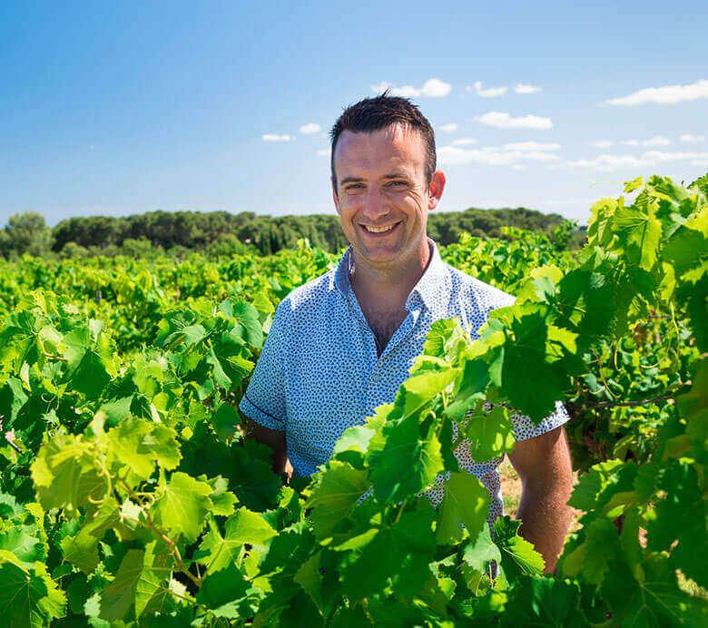 Les vignerons Montagnac Domitienne s'engagent aujourd'hui dans une démarche RSE